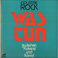 Was Tun - Industrie Rock LP