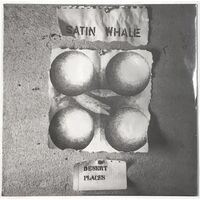 Satin Whale - Desert Places LP 18015