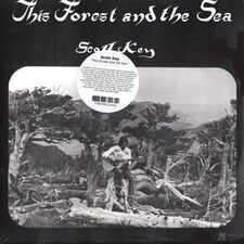 Scott Key - This Forest and the Sea LP