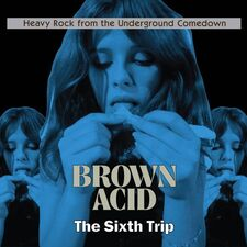 Various Artists - Brown Acid: The Sixth Trip LP