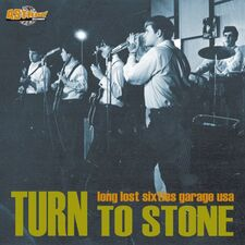 Various Artists - Turn To Stone LP