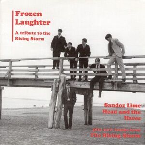Frozen Laughter A Tribute to Rising Storm