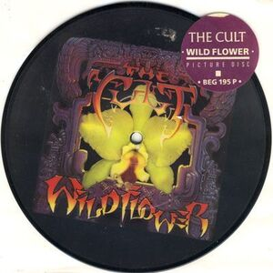 Cult, The - Wildflower 7inch Pic Disc