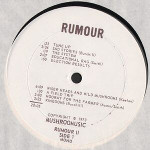 Perth County Conspiracy Does Not Exist - Rumour LP