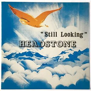 Headstone - Still Looking LP WIS11LP