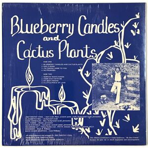 Vigil, Job Timothy - Blueberry Candles And Cactus Plants LP S10951